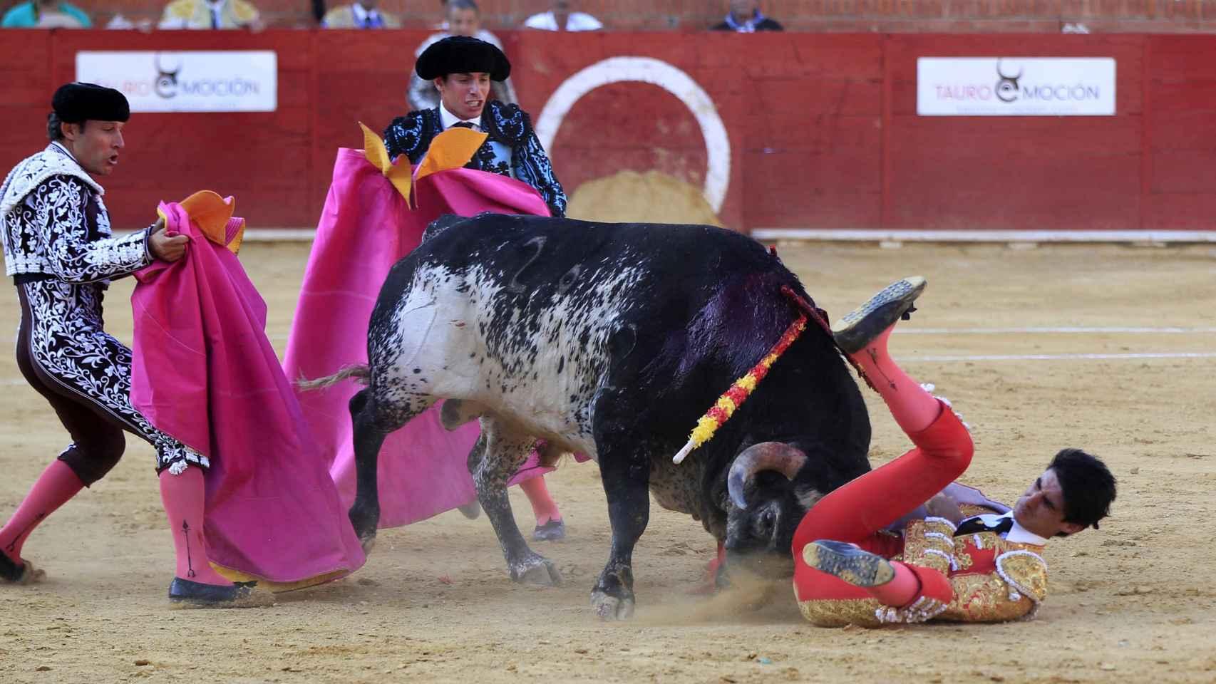Muere el torero Víctor Barrio tras ser corneado en Teruel
