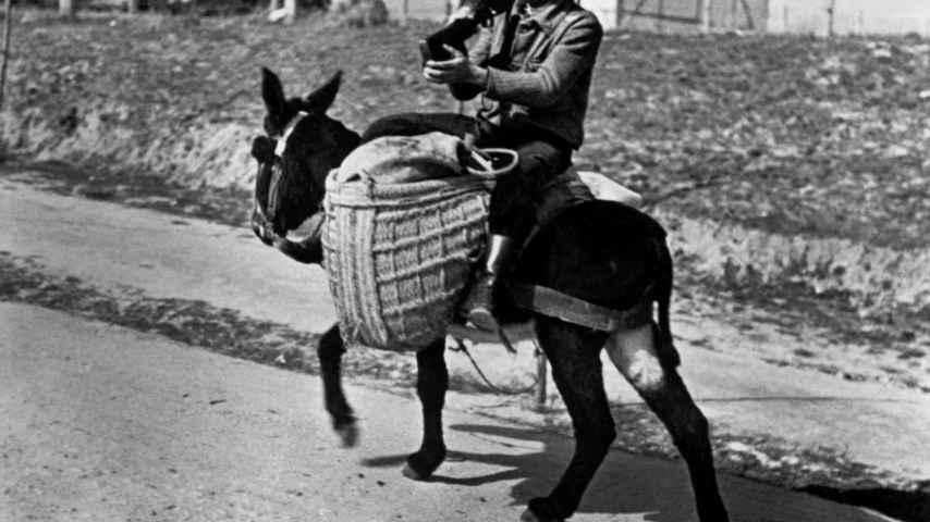 Un miliciano subido a un burro cerca de Madrid (1936)
