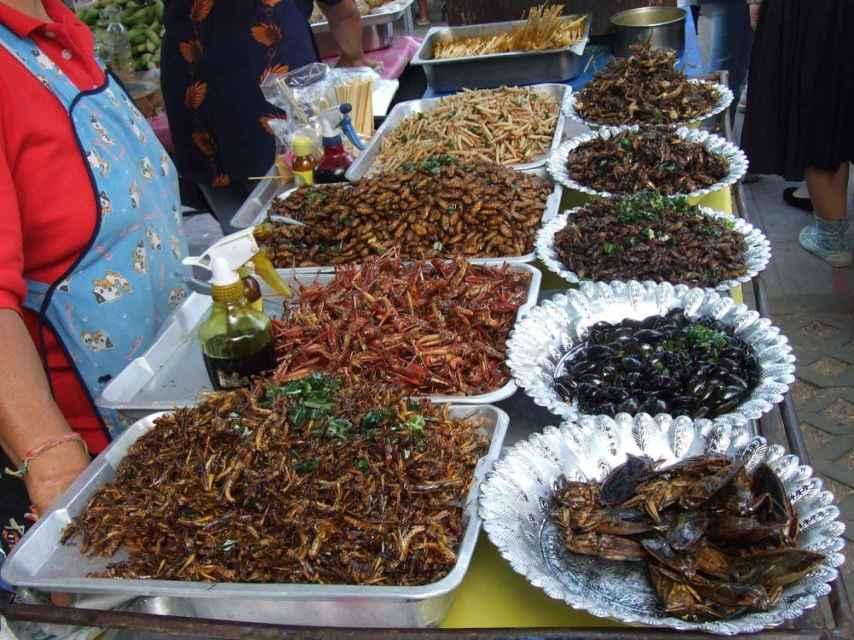 Mercado de insectos en Tailandia.
