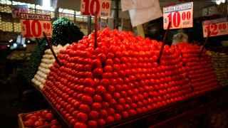 La ciencia trata de lograr que estos tomates sepan a algo