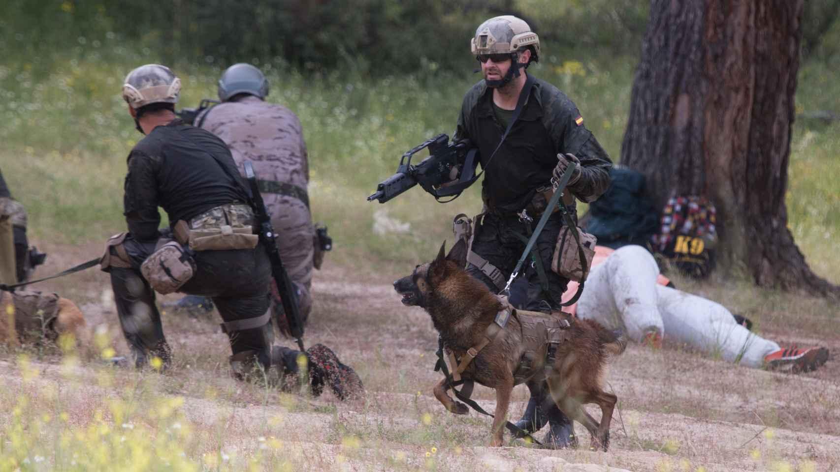 Jornadas técnicas del Perro de Intervención.