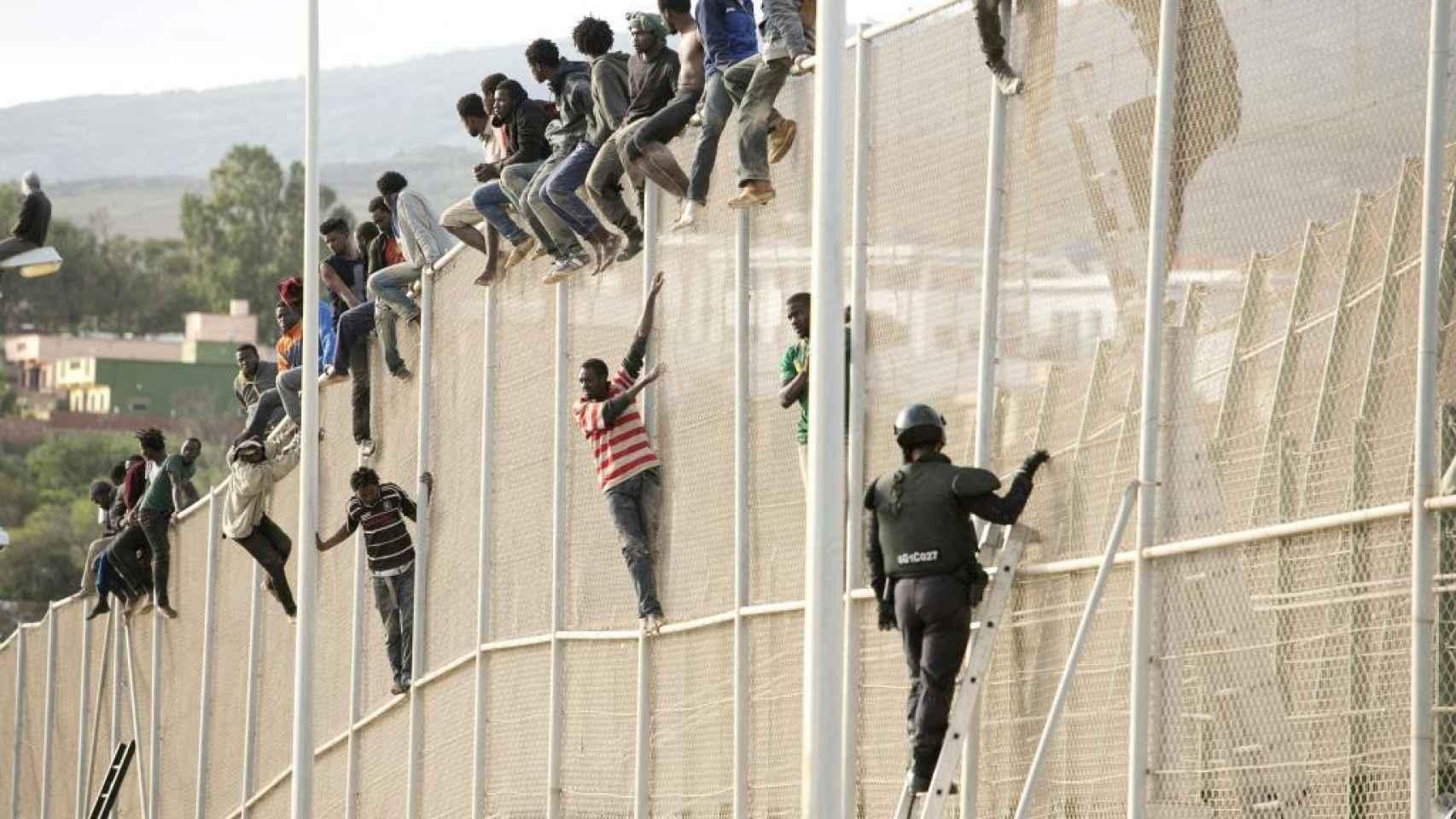 Algunos migrantes intentan escalar la valla de Melilla.