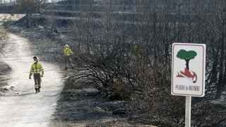 Dos brigadistas trabajan en el parque natural de la Granadella tras el incendio forestal de Xàbia y Benitatxell.