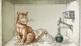 schrodingers-cat-3