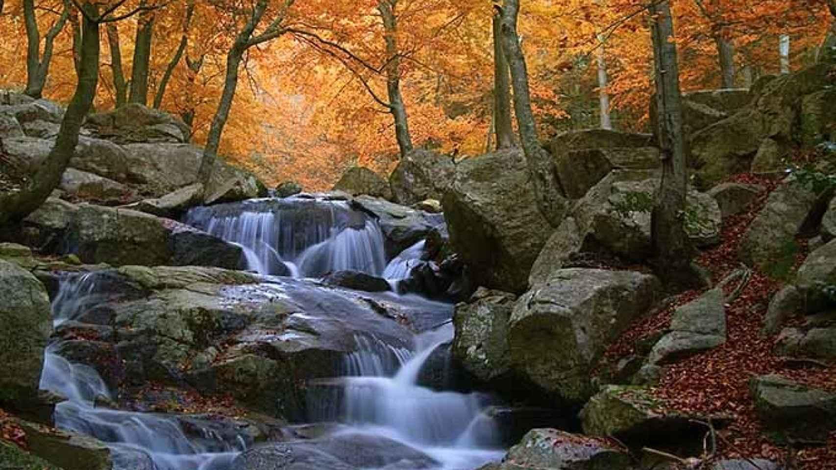 Parque Natural del Montseny.
