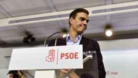 El ex secretario general del PSOE, Pedro Sánchez.
