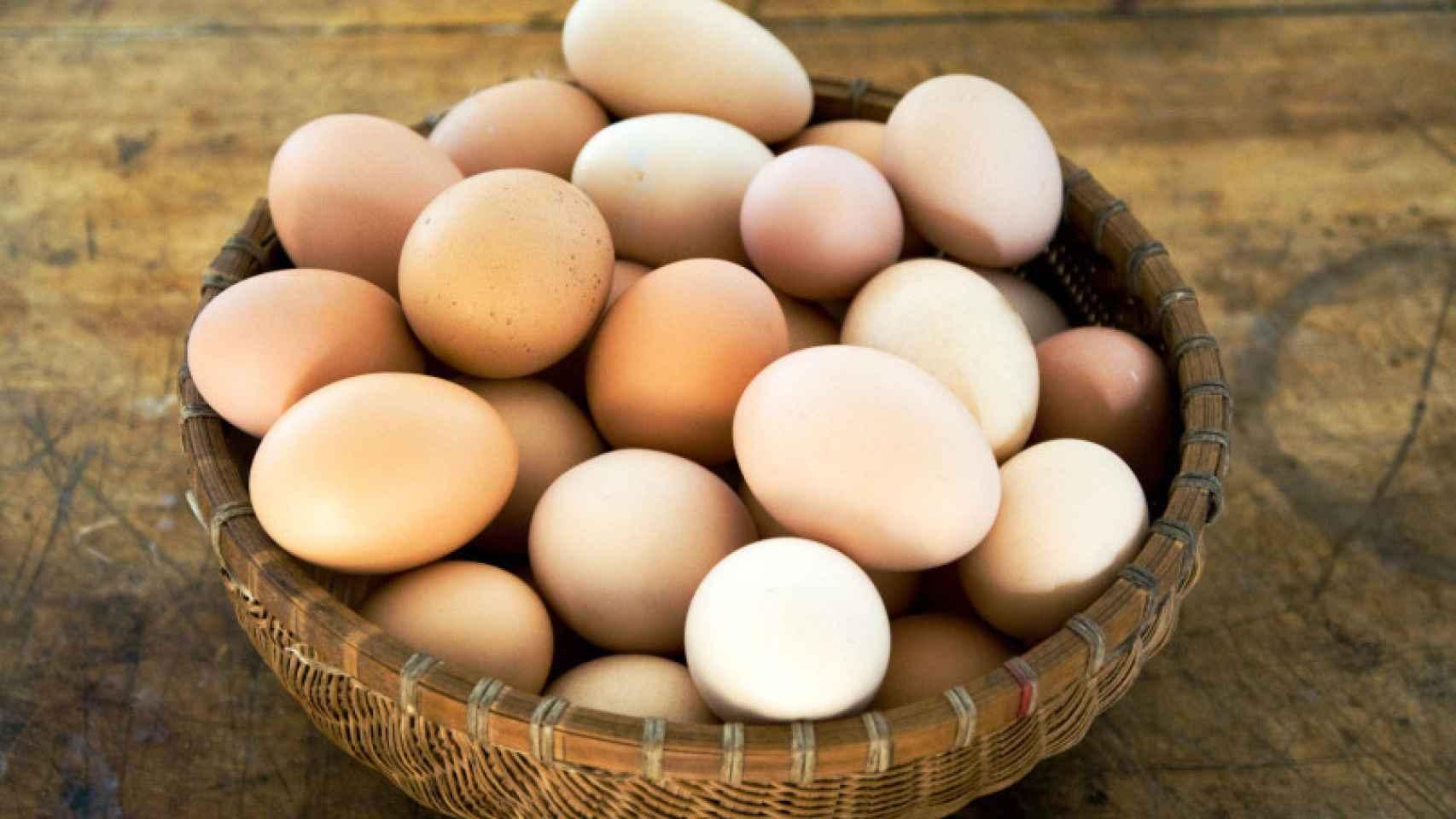 Será por Huevos...