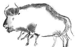 Científicos hallan evidencias del esquivo Bisón de Higgs
