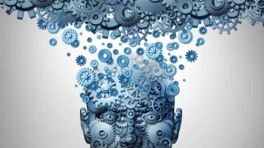 consciencia en el cerebro