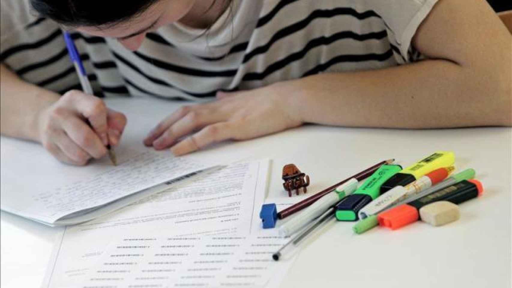 La CEAPA aglutina a más de 13.000 asociaciones de padres y madres de la escuela pública