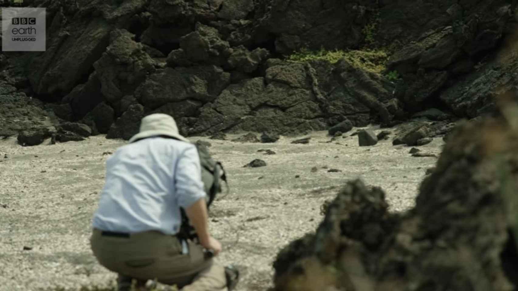 Uno de los cámaras de 'Planet Earth' que se encontraba grabando la escena.