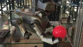 Si teme que un robot le robe el trabajo, visite Artificial Expo