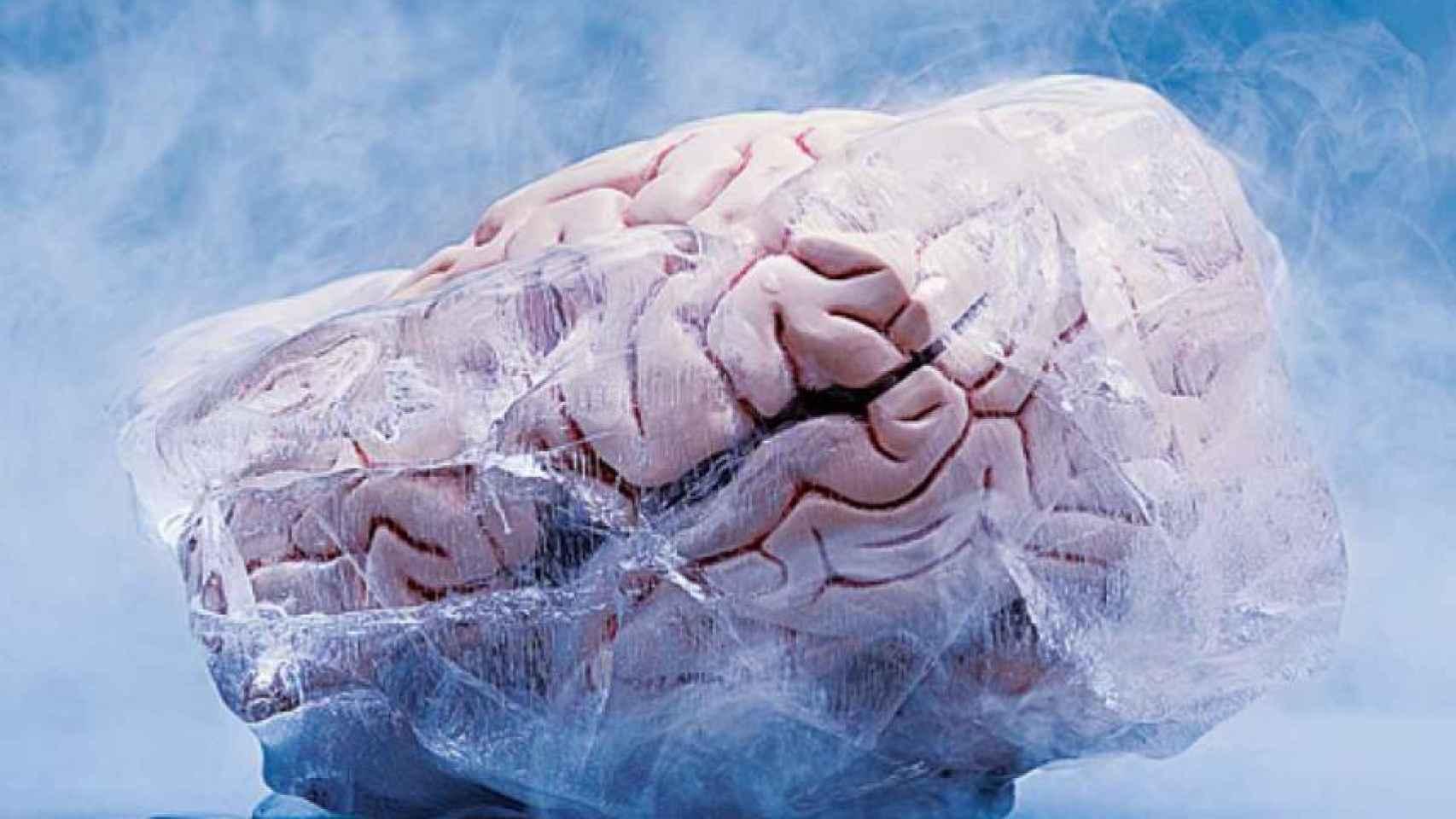 Una representación de un cerebro criopreservado