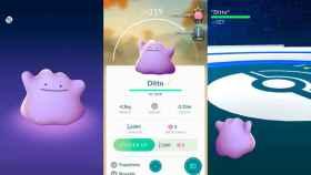 Ditto llega a Pokémon GO, pero no lo verás hasta que lo captures
