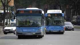 Autobuses de la EMT.