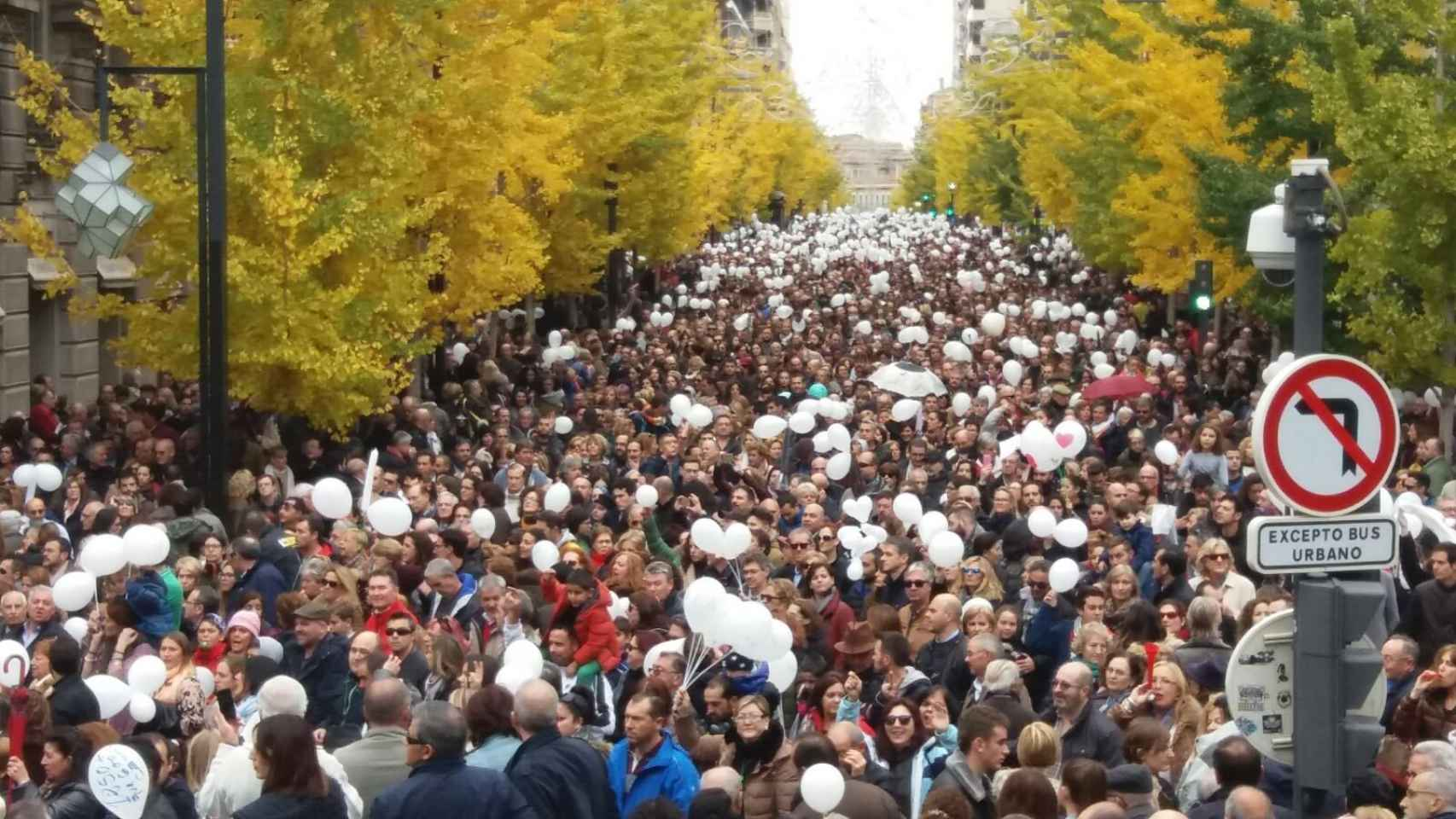 Imagen de la protesta en las calles granadinas.