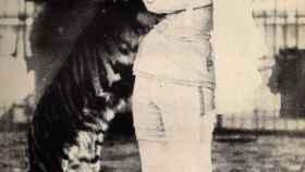 Mabel Stark con su tigre.