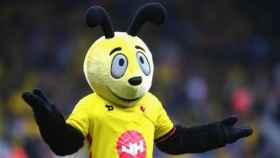 Denuncian a la mascota del Watford por estar fuera de control y mofarse de los rivales