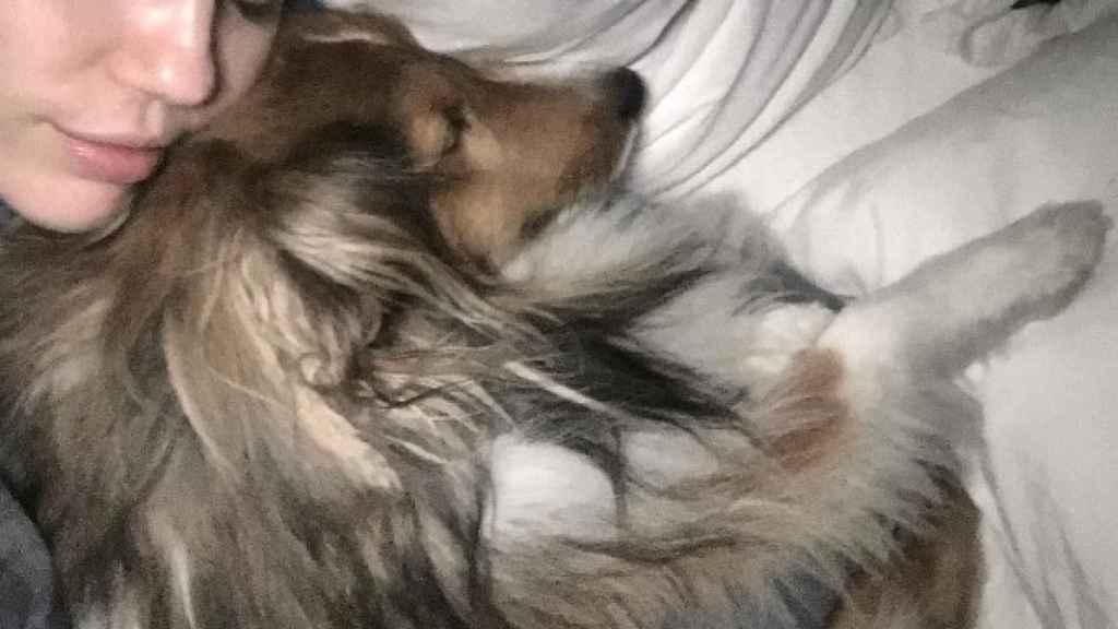 Miley junto a uno de sus perros.