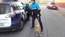 perro-estrangulado-valladolid-policia-1
