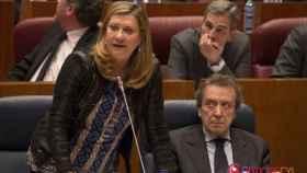 Pilar del Olmo, pp, junta, pleno, cortes