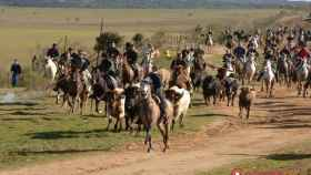 cr-carnaval-encierros-caballo-2