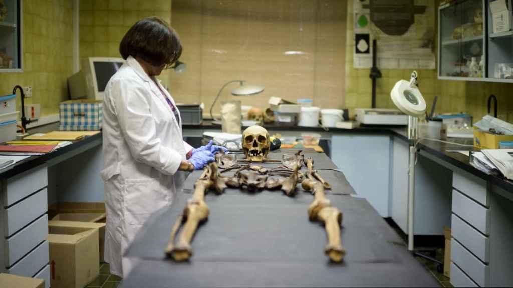 Los especialistas del Instituto Anatómico Forense ayudan a identificar mediante pruebas la identidad de la persona sin hogar fallecida.