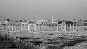 El trágico destino de las ruinas de Palmira