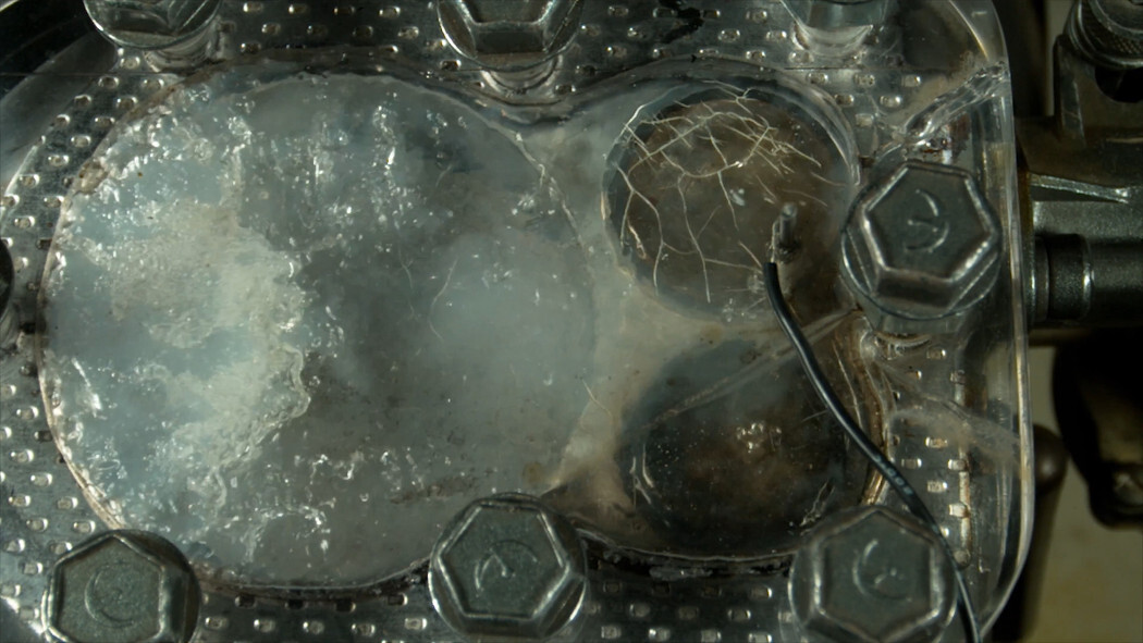 motor transparente 5