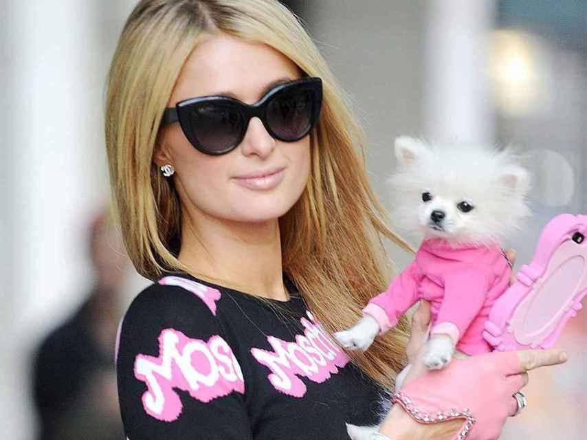 Paris Hilton y su perro.