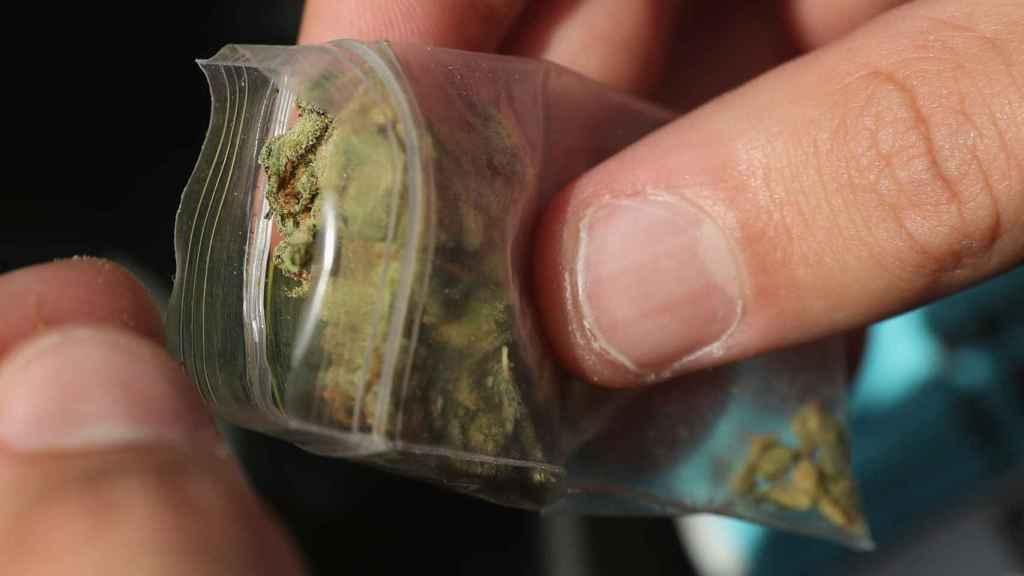 Un cogollo de marihuana.