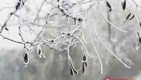 frio-invierno-navidad-15