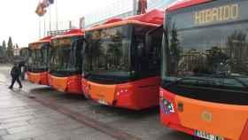 autobuses-nuevos-burgos