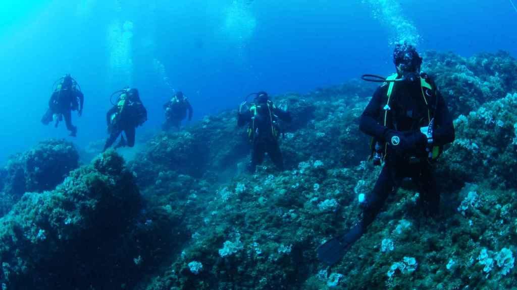Efectivos de la Armada española en una misión de inspección de un pecio.