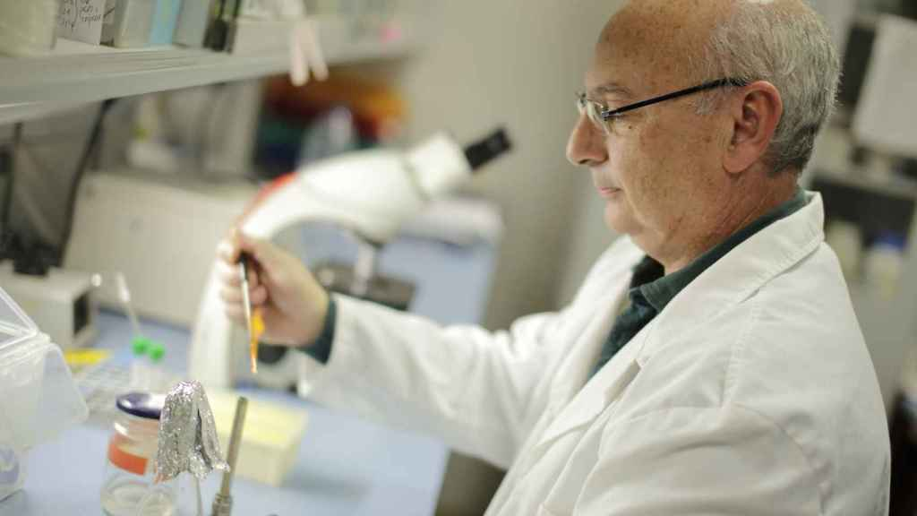 El profesor Mojica, en su laboratorio