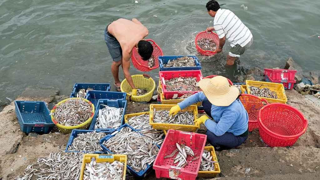 Pescadores vietnamitas clasifican sus capturas.