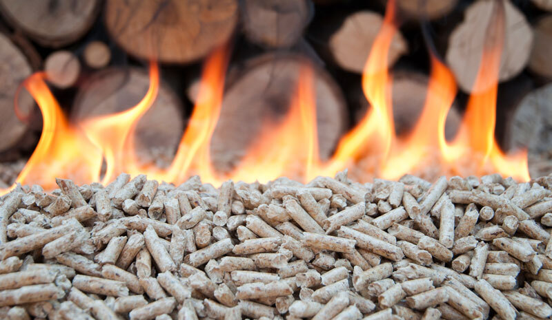 biomasa-forestal-combustion