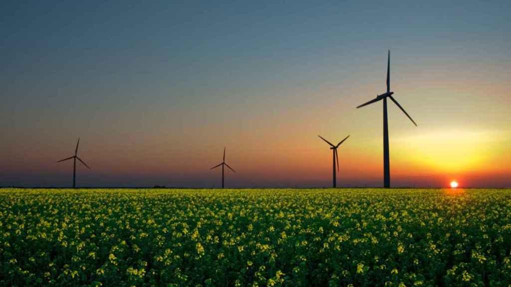 El sector de las renovables ha sido sometido a varios recortes desde 2010.