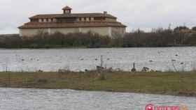 Lagunas de Villafáfila, Enjoy Castilla y León