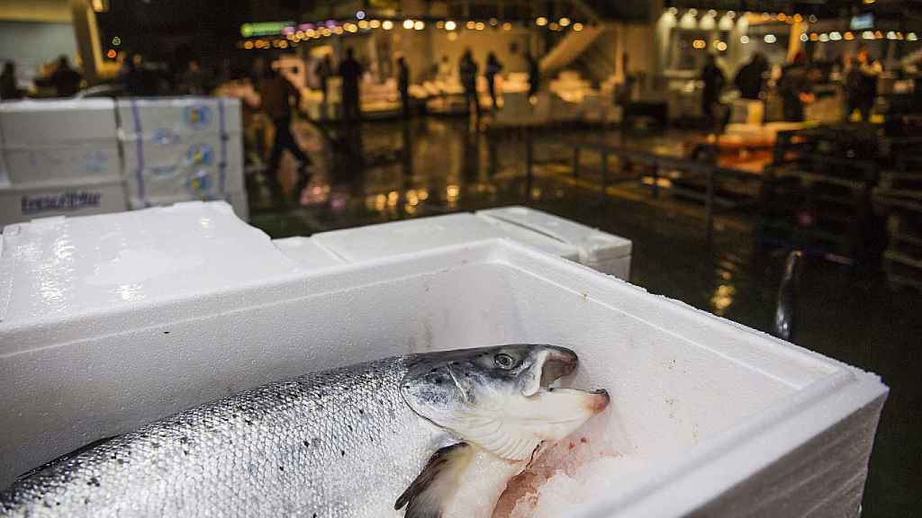 Un salmón fresco en Mercamadrid.