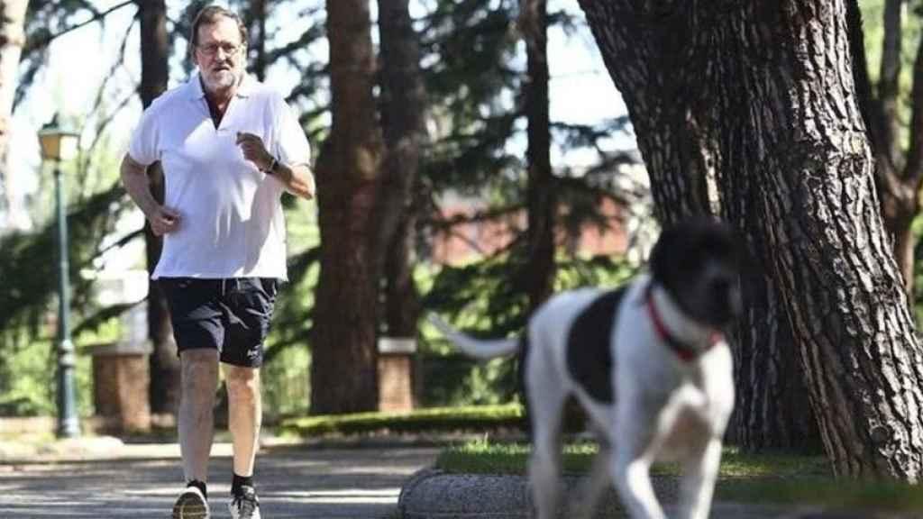 Rajoy hace ejercicio con su perro Rico.