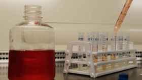 Pipetas en el International AIDS Vaccine Initiative Laboratory de Brooklyn.