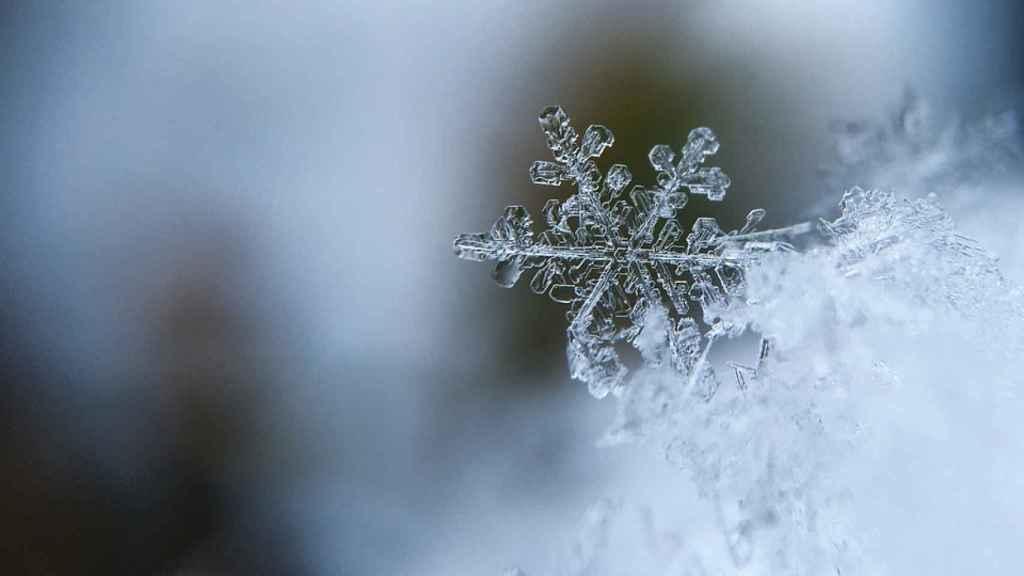 Un copo de nieve.