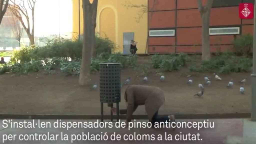 Un operario prepara el dispensador en el vídeo distribuido por el Ayuntamiento de Barcelona.