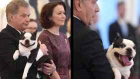 El presidente de Finlandia sirviendo de soporte a la verdadera estrella.