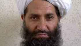 El lado ecológico de los talibanes: el mulá Haibatullah exige plantar árboles