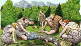 Cinco neandertales de El Sidrón degustan setas, piñones y musgo