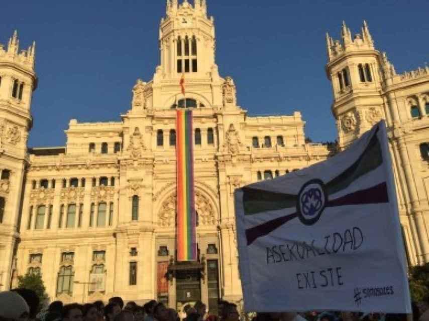 Manifestación por el día del Orgullo LGTB con la bandera asexual.