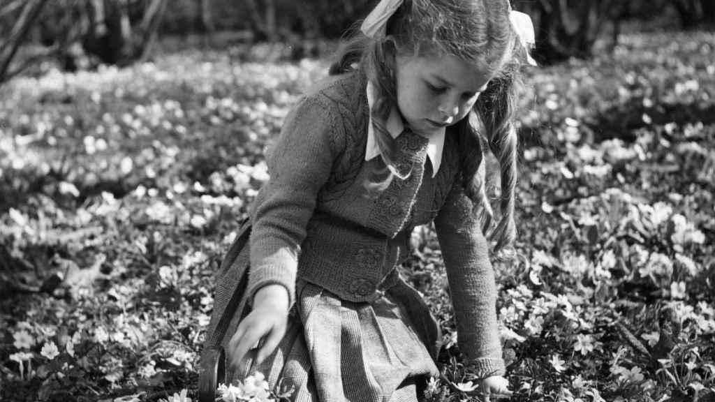 La primavera entristece, a veces