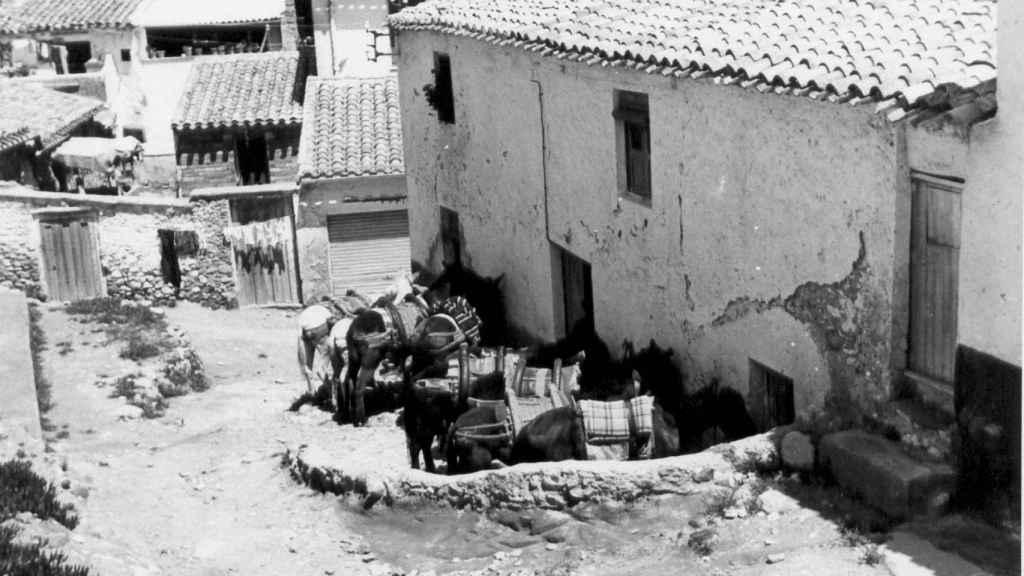 En una de las cuevas de la calle Bodeguicas nació Emilia La Canastera. En la imagen se observa cómo era esta vía en 1975.